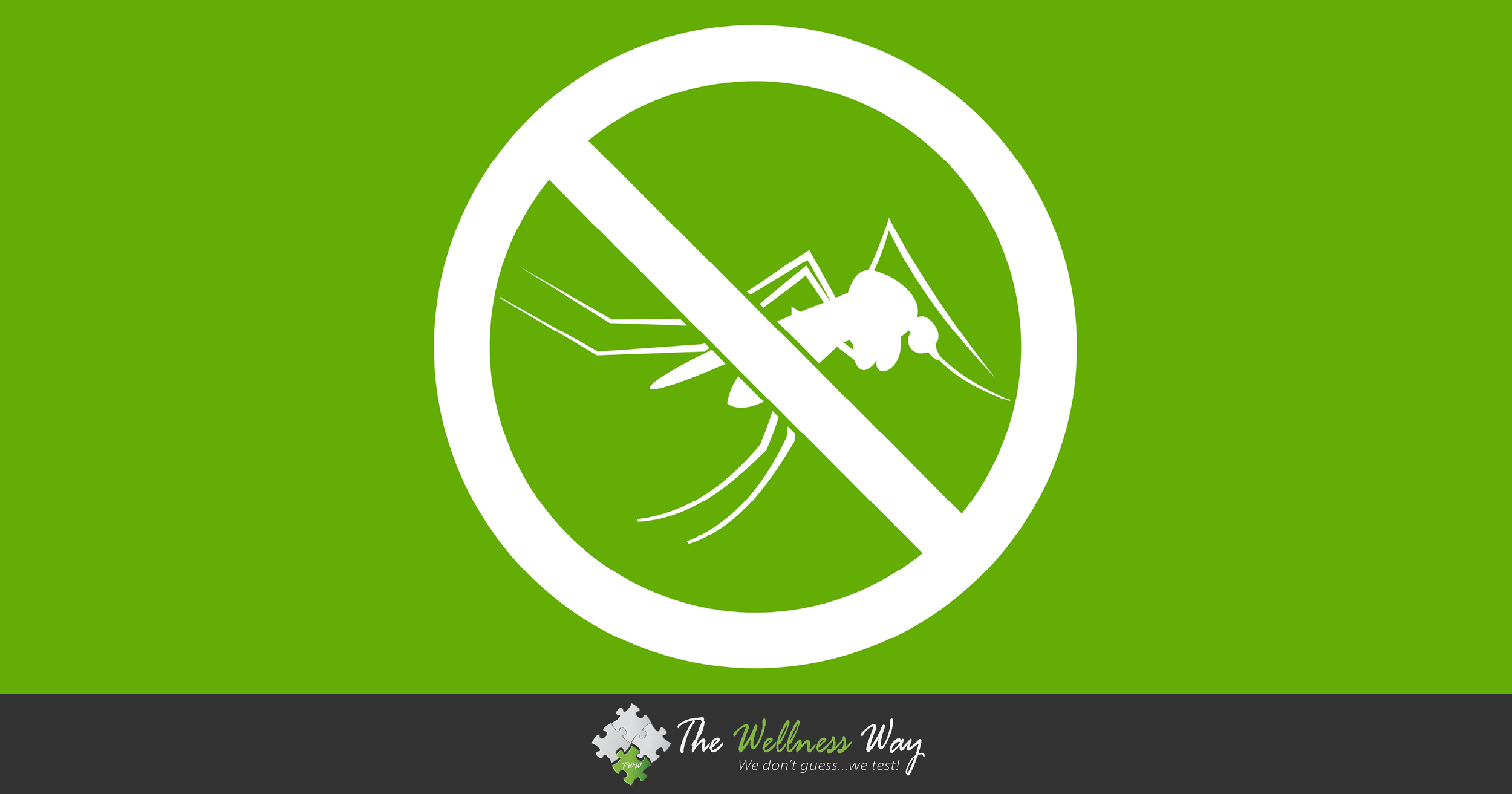 Natural Bug Repellents