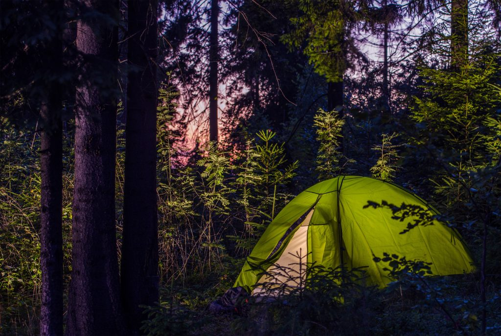 Green tent in forest at night for healthy camping ideas